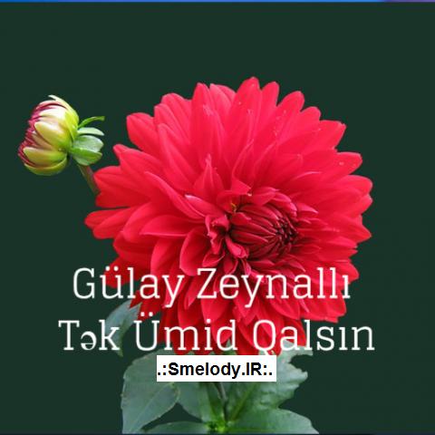 Gulay Zeynalli Tek Umid Qalsin - دانلود آهنگ آذری گولای زینالی به نام تک امید قالسین