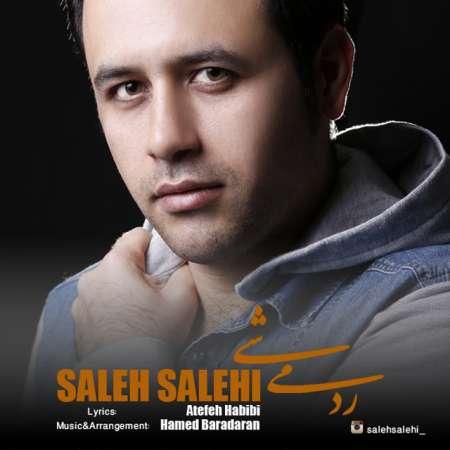 دانلود آهنگ   صالح صالحی  به نام   رد میشی