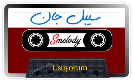 دانلود آهنگ ترکی سیبل جان به نام Usuyorum
