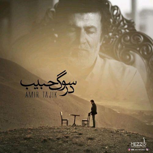دانلود آهنگ امیر تاجیک به نام در سوگ حبیب ♫