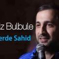 Perviz Bulbule Meleklerde Sahid Single 2019 120x120 - دانلود آهنگ پرویزبلبل  به نام ملک لرده شاهد